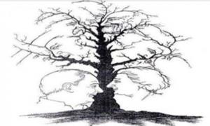 Графическая загадка на пытливость ума — Сколько человек изображено на картинке?