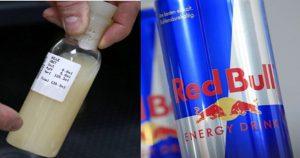 Секретный ингредиент напитка «Red Bul». Бык там нарисован не просто так.