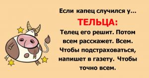 Весёлый гороскоп: как встречают трудности знаки Зодиака