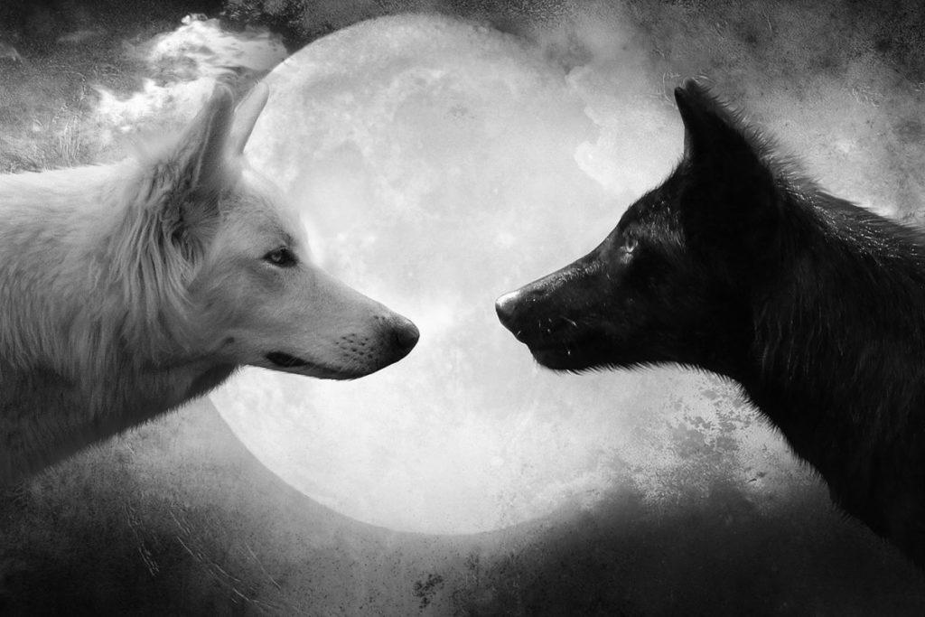 Притча про двух волков. Читается 20 секунд, а запоминается навсегда.