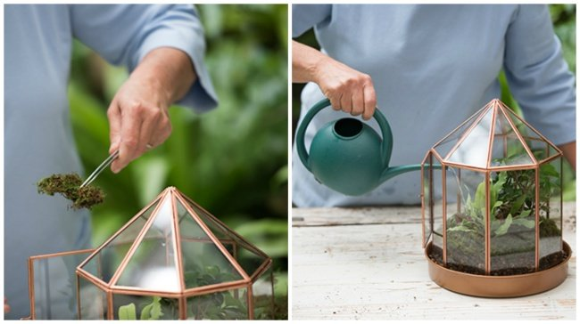 Как сделать сказочный мини-сад своими руками и добавить 100 пунктов к уюту