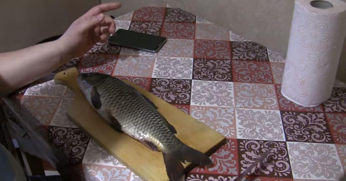 Легкий и быстрый способ почистить рыбу от чешуи