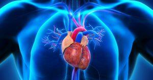 5 продуктов которые укрепят ваше сердце