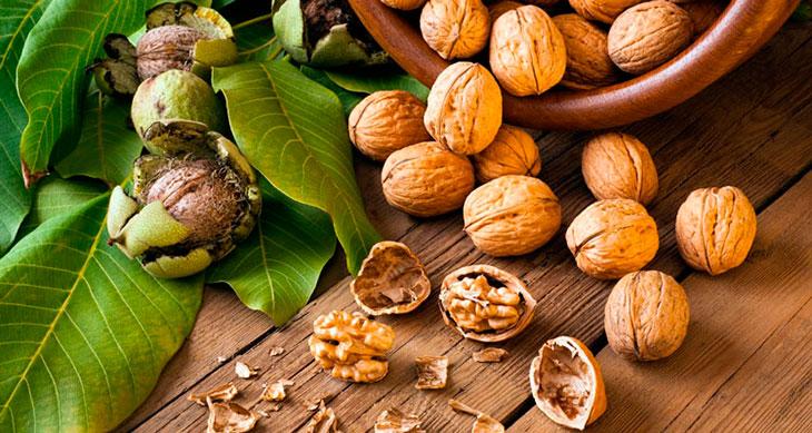 Перегородки грецких орехов — лекарство от всех болезней! Даже мой лечащий врач рекомендует
