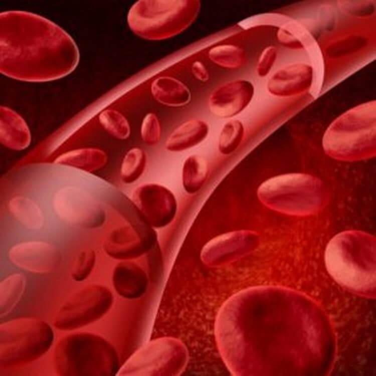 Это нужно знать о показателях крови. Сохраните себе, чтобы знать расшифровку анализа крови.