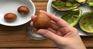 Всего 1 косточка авокадо освободит ваши почки от камней!