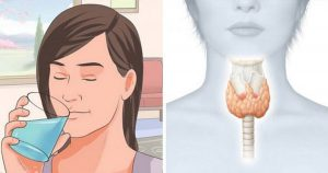 Как перезапустить щитовидку, чтобы сжечь лишний жир и ускорить метаболизм