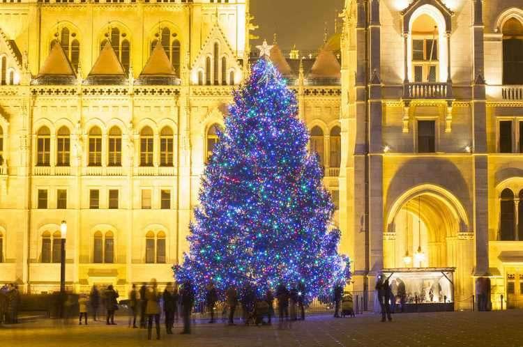 Киевскую ёлку признали самой красивой в Европе. Вот полный рейтинг