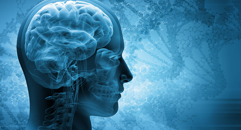Народные средства для улучшения мозгового кровообращения: скажи «нет» слабоумию, рассеянности и немощи!