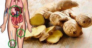 Попробуйте есть имбирь каждый день в течение 1 месяца, и посмотрите что будет с вашим телом