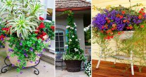 Висячие сады или сад в горшке — подборка очаровательных идеи для участка