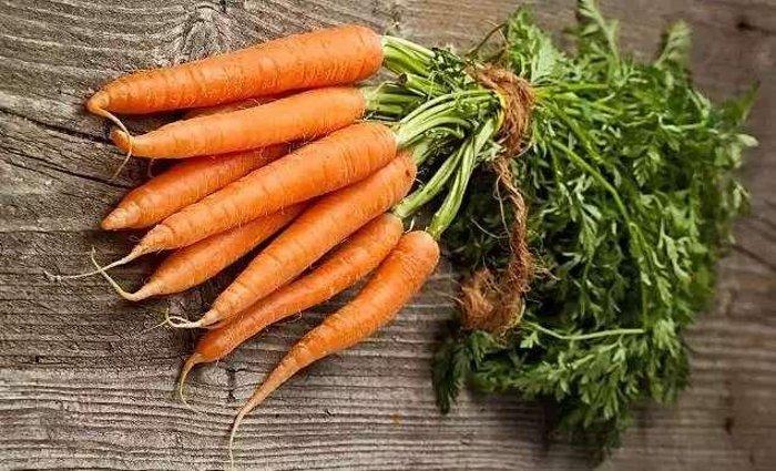 Готовы к такому урожаю? Нужно сеять морковь именно этим способом