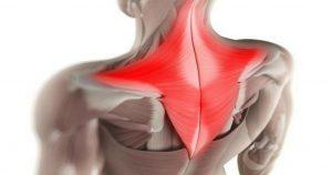 Простой способ снять мышечные зажимы шеи и спины! Боль быстро уходит!
