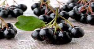 Это самые полезные ягоды в мире! Убивают вирусы и замедляют старение организма!
