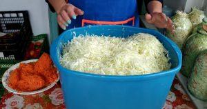 В какие дни нужно квасить капусту. Квашеная капуста по нашему семейному рецепту!